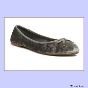 Shoes - Light Gray Crushed Velvet Ballet Flat